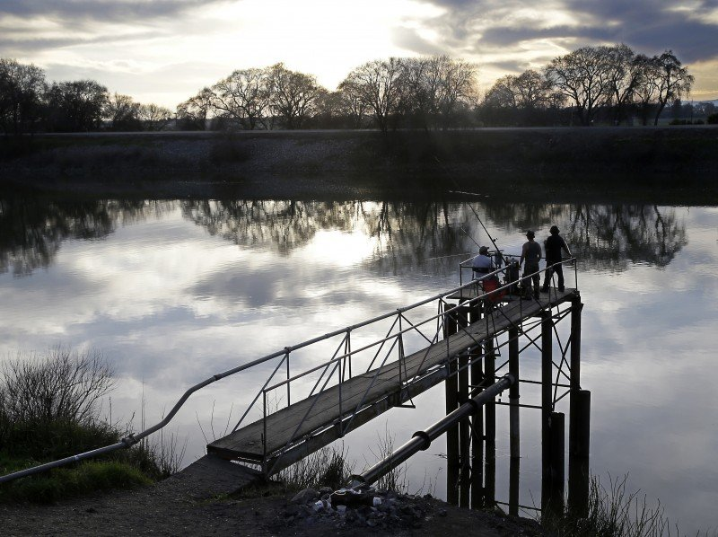 People try to catch fish along the Sacramento River in the San Joaquin-Sacramento River Delta, near Courtland, Calif. (Rich Pedroncelli, AP)