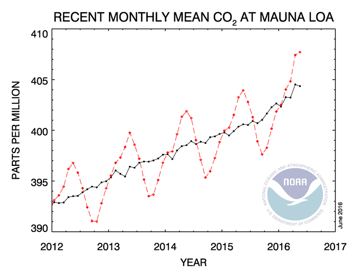 The red line shows the recent monthly mean values for carbon dioxide measured at Mauna Loa Observatory, Hawaii. The black line shows the trend over time. (Earth Systems Research Laboratory, National Oceanic and Atmospheric Administration)