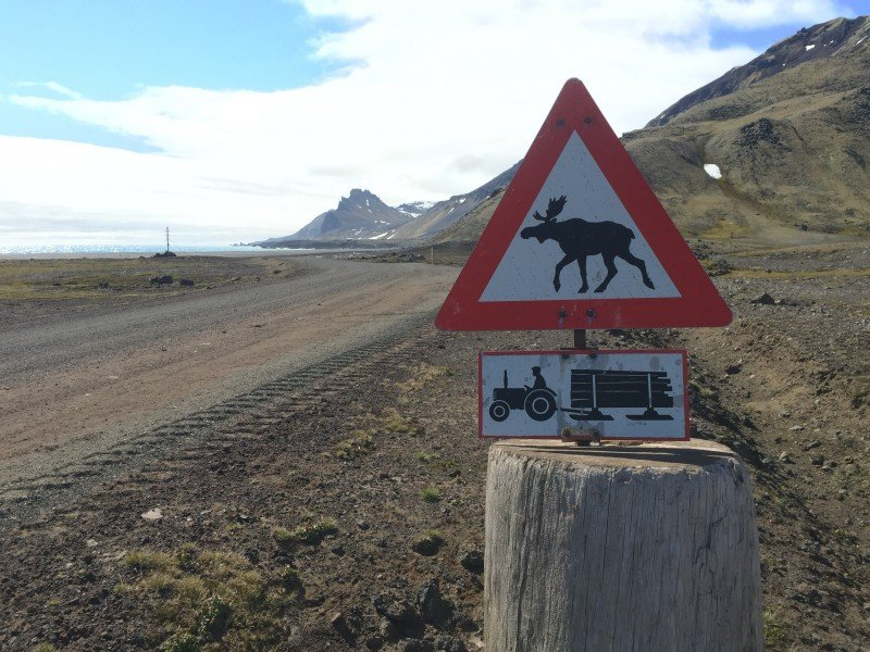 None of these things exist on Jan Mayen, but it's good to have a sense of humor so far from civilization. (Jennifer Kingsley)