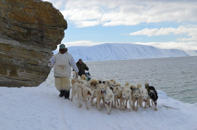 Leading sled dogs on a ride from Qaanaaq to Siorapaluk. (WWF/Mette Frost)
