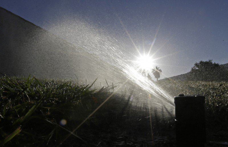 A lawn being watered in Sacramento, Calif. (Rich Pedroncelli, AP)