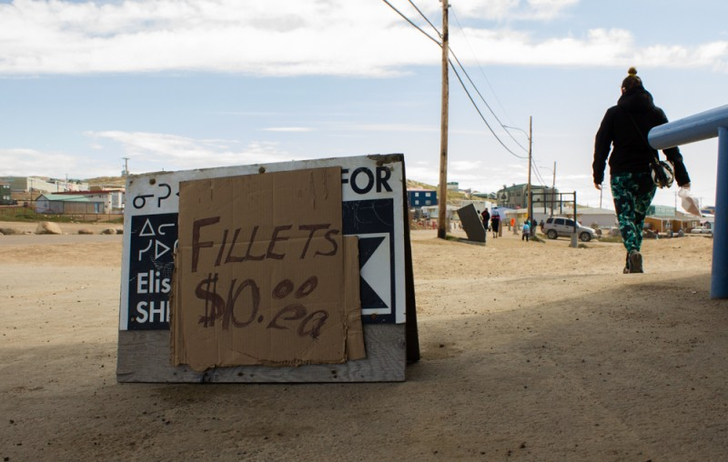 Iqaluit fishers sometimes sell fresh Arctic char in the local supermarket parking lot. (Alexander Kim)