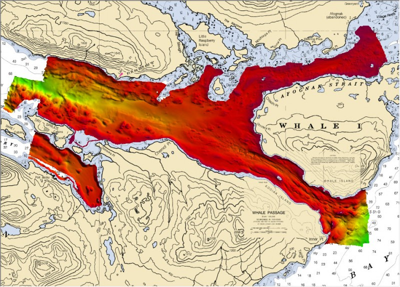 This chart of Whale Passage (off Kodiak, Alaska) shows the varying depths of the passage. (NOAA)