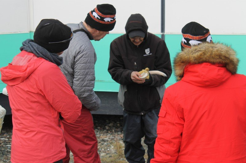 An Ulukhaktok carver gives passengers from the Crystal Serenity a look at the inside of a muskox horn he works into a slender bird. (Elaine Anselmi)