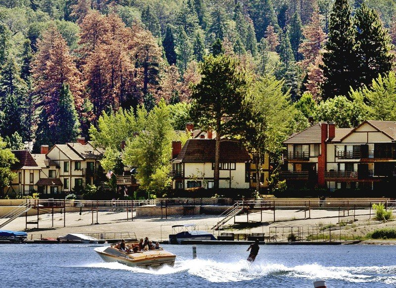 Dead pine trees are seen in shades of red and brown interspersed among healthy green trees at a lakefront resort in the mountain town of Lake Arrowhead, Calif. (Reed Saxon, AP)