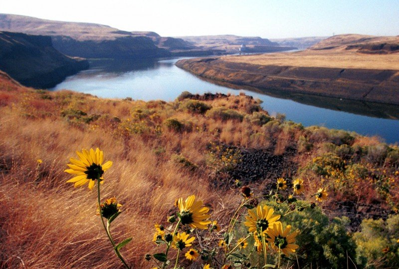 The lower Snake River below Little Goose Dam is seen in this Sept. 21, 1999 photo, taken near Starbuck, Wash. (Jackie Johnston, AP)