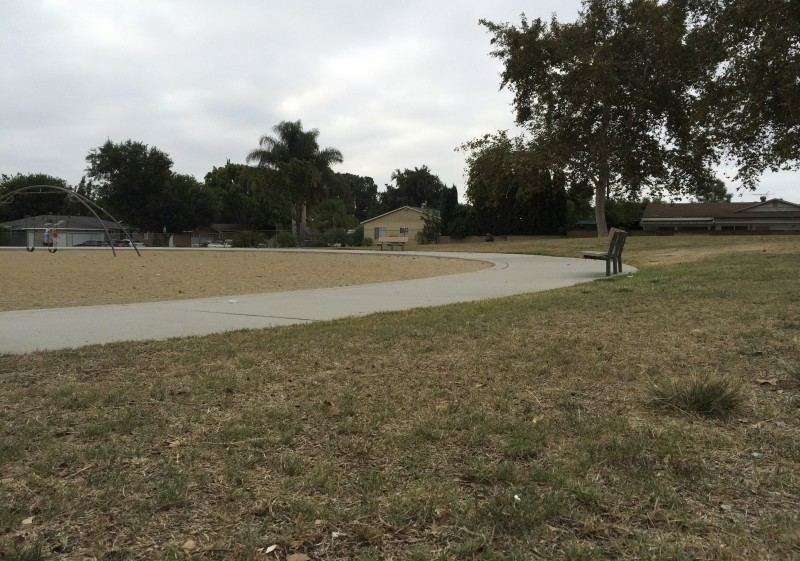 Patches of yellowing grass line the area at West Haven Park in Garden Grove, Calif. in early August 2016. Californians conserved less water in June, the first month that statewide drought restrictions were eased and water conservation has continued to fall. (Amy Taxin, AP)