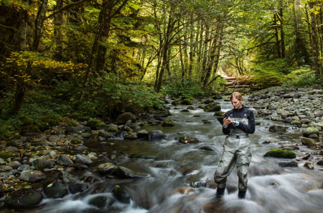 Still Creek is a tributary of the Zigzag River located within Oregon's Mt. Hood National Forest. The Freshwater Trust has developed a tablet-optimized app to make collecting and analyzing data on their projects more accurate and efficient. (The Freshwater Trust)