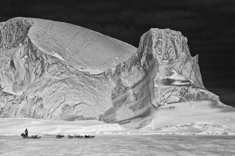 Photo from Scoresbysund in Northeast Greenland on a hunting trip on the sea ice. (Carsten Egevang)