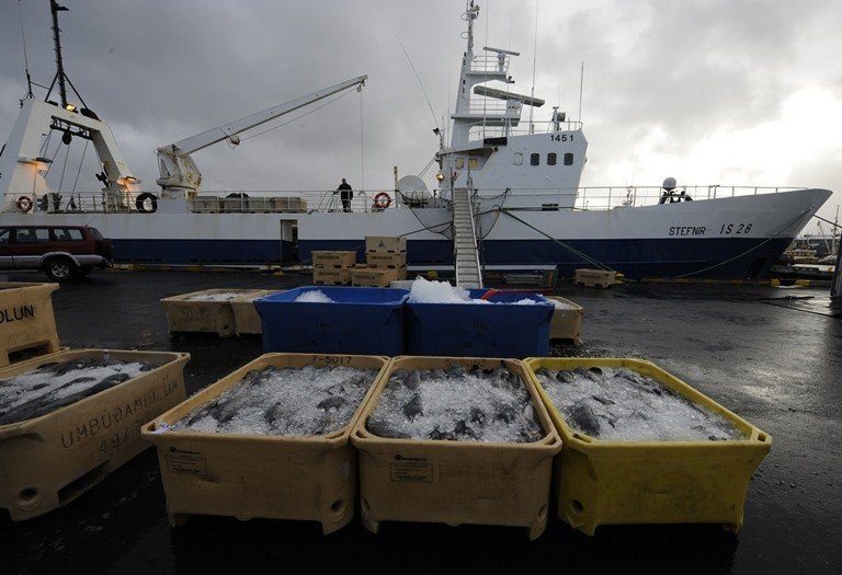 Boxes of fish for export are stored on the docks of Reykjavik's harbour. (AFP/OLIVIER MORIN)