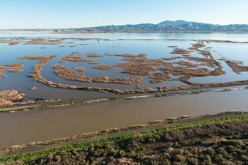 Roaring River levees overtop at Grizzly Island in Solano County, Calif, located in the Sacramento-San Joaquin Delta, Jan. 13, 2017. (Florence Low/California Department of Water Resources)