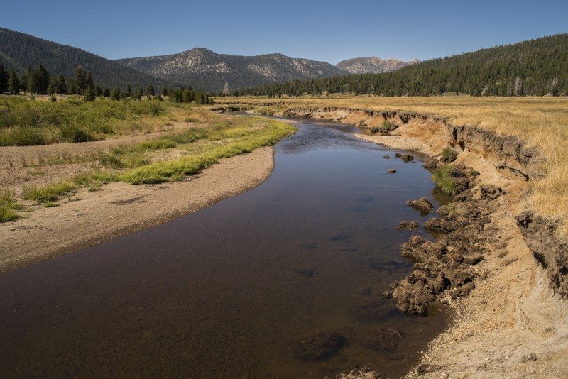An eroded stream bank cuts deeply through Hope Valley, a large meadow south of Lake Tahoe, which feeds the Carson River. American Rivers is working on a meadow restoration project here. (Photo Courtesy American Rivers)